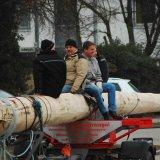 image bk_baumeinholen_ah_9019-jpg