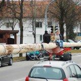 image bk_baumeinholen_ah_9021-jpg